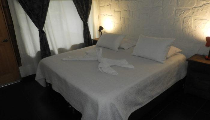 Habitación doble vista cama
